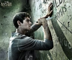 Thomas-The-Maze-Runner-the-maze-runner-thomas-39099573-500-417