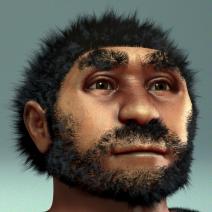Homo_erectus_pekinensis_-_archeaeological