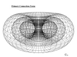 primary-connection-torus-copy