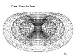 primary-connection-torus-copy